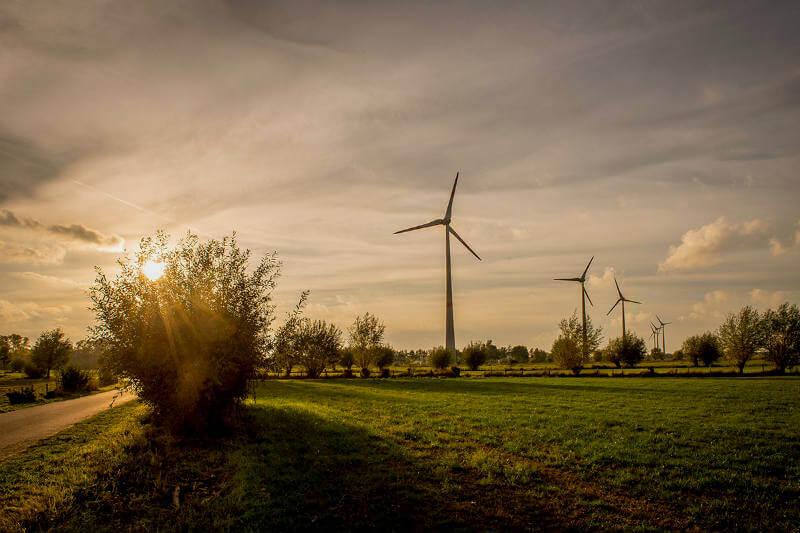 El continente podría volverse más ventoso si la temperatura global alcanza los 1.5 ºC, lo que afectaría la generación de energía eólica, entre otras cosas.