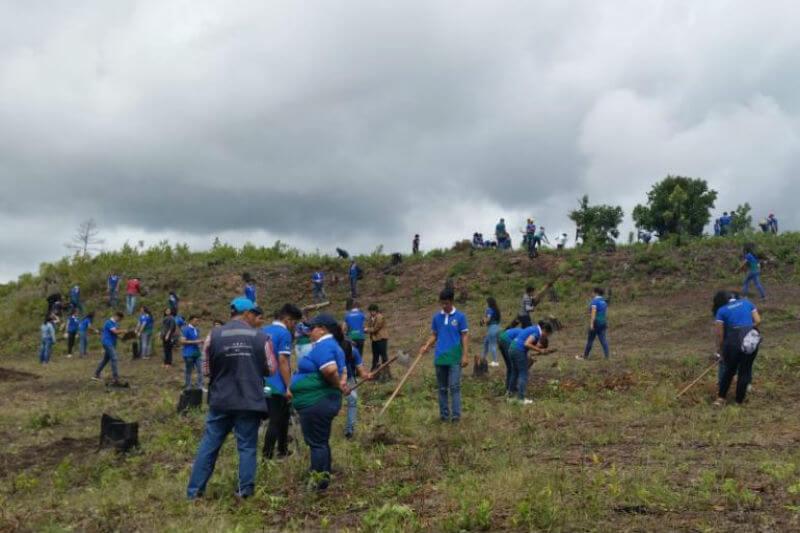 El ICF lanzó la campaña de restauración Honduras 20/30, con la cual esperan alcanzar las 87 mil hectáreas restauradas en los próximos años.