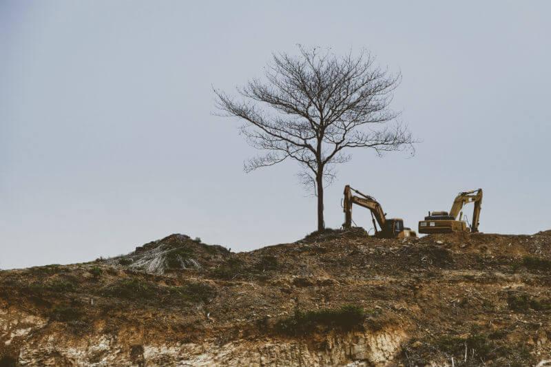 """El Ideam presentó un estudio indicando que el año pasado se reportó """"una pérdida total de bosque natural de 219,973 hectáreas"""" en el país."""
