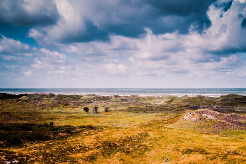 ESA advirtió que Dinamarca corre el riesgo de desertización por la ola de calor al mostrar unas fotos de campos donde es visible un fuerte deterioro.