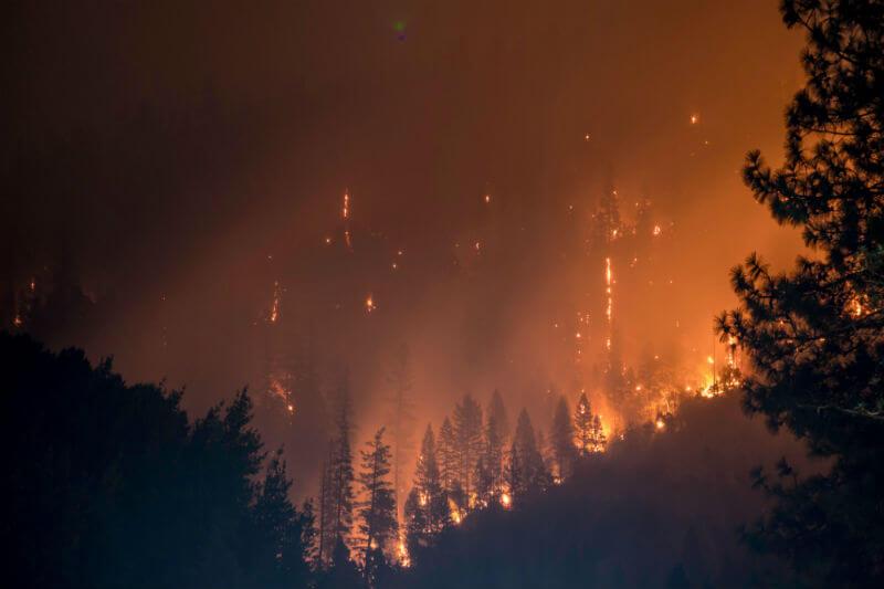 Solo en Colorado, en los primeros seis meses del años se quemaron unas 80,000 hectáreas, cifra a la que en años anteriores solo se llegaba en años completos.