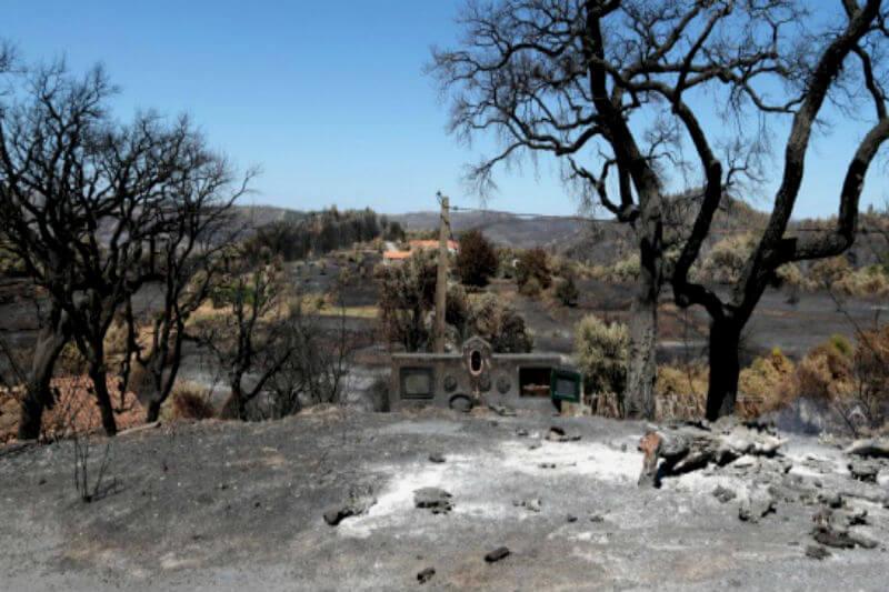 El Gobierno declaró situación de alerta en siete distritos del país por el aumento del riesgo de incendio forestal debido a las previsiones meteorológicas.