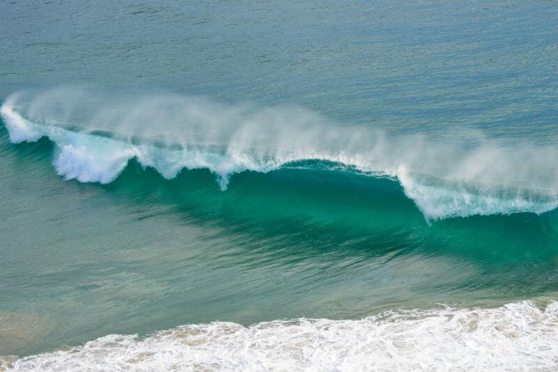 """Según un estudio, entre 1982 y 2016, el número de """"olas de calor marinas"""" se duplicó. Períodos prolongados de calor pueden dañar arrecifes de coral y peces."""