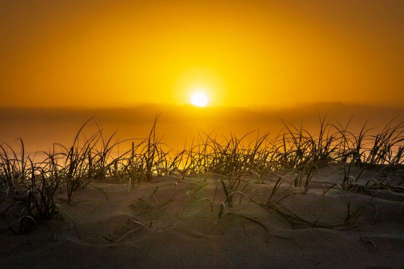Estudio explica por qué el calentamiento del Ártico está haciendo que las olas de calor en otros lugares sean más persistentes y peligrosas.
