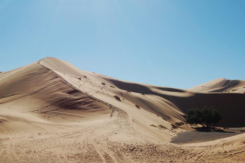 Si todo el desierto estuviera cubierto de parques eólicos y una quinta parte de paneles solares, el promedio diario de precipitaciones sería más del doble.