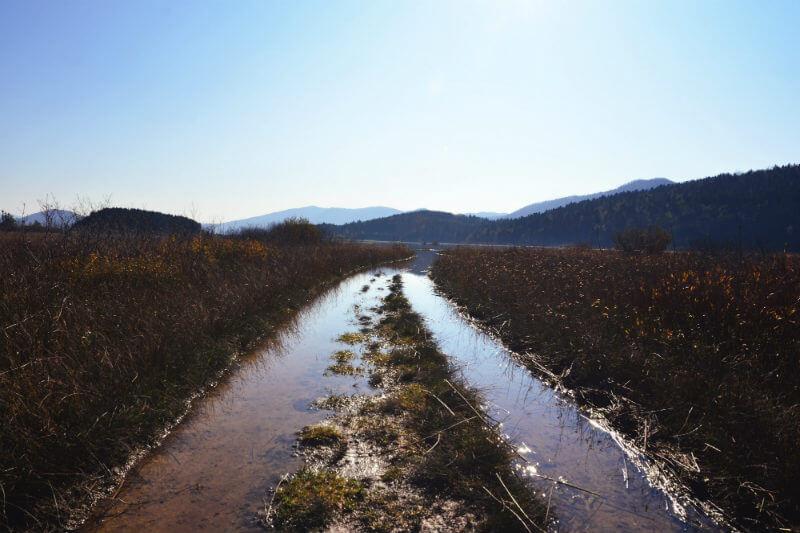Estas zonas están desapareciendo a un ritmo tres veces mayor que los bosques, según un informe relacionado a la Convención de Ramsar sobre los Humedales.