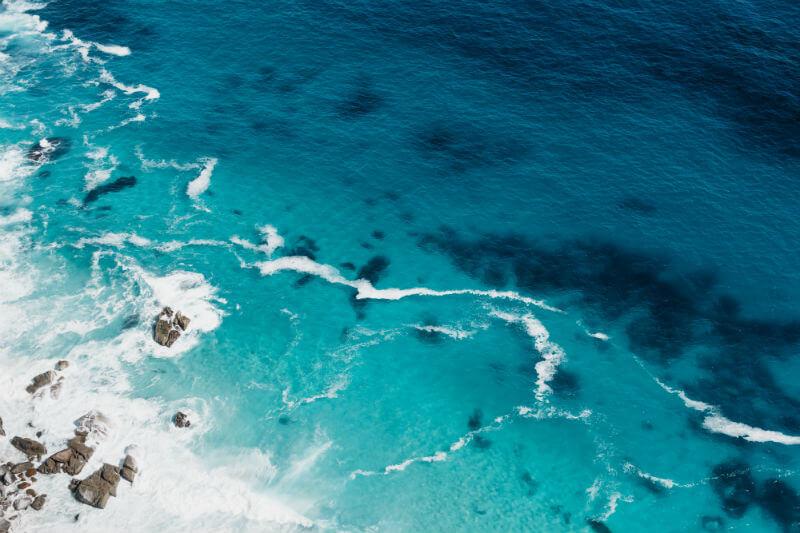 Países de todo el mundo iniciarán la negociación de un tratado que regulará el alta mar de los océanos y es considerada clave para proteger el medio ambiente.