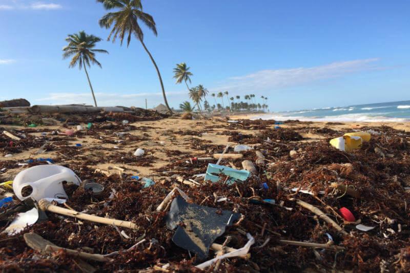 La contaminación de plásticos en los océanos no podrá combatirse ante la falta de acuerdo sobre las medidas a adoptar entre los ministros reunidos en Canadá.