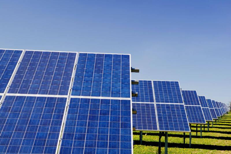 Como parte de su adhesión al programa climático RE100, Grupo Bimbo se comprometió a convertir su operación en 100% renovable.