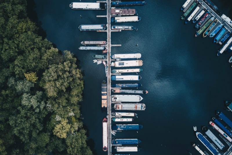 La Organización Marítima Internacional busca limitar la velocidad de los buques para reducir las emisiones de CO2 y proteger a las ballenas por las colisiones.