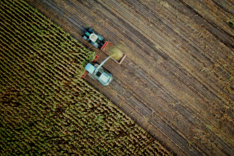 Según indicó el presidente del IPCC, Hoesung Lee, la reforestación y el secuestro de carbono en los suelos ayudarían a neutralizar las emisiones.