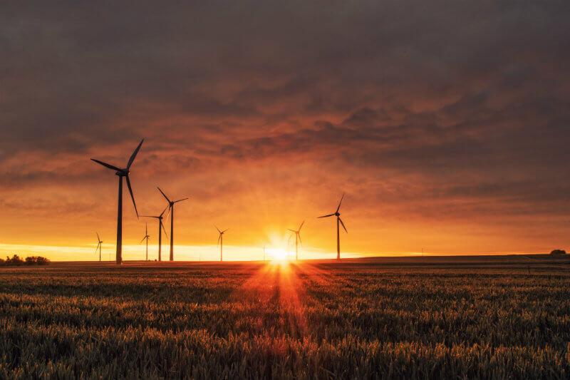 Las energías eólica y solar deberán producir siete veces más que el carbón en 2040 si se quiere cumplir con el Acuerdo de París, según informe de la AIE.