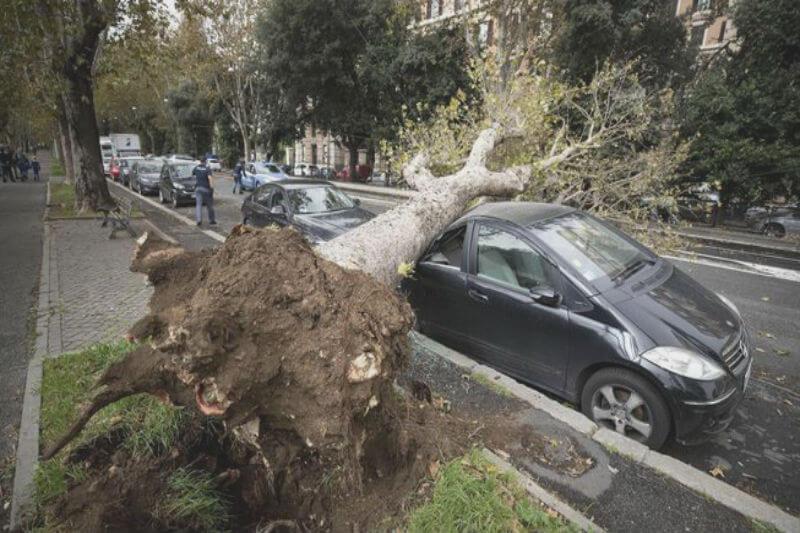 El clima extremo que azota el país desde hace una semana ha dejado 29 víctimas y daños en varias regiones, informó el primer ministro Giuseppe Conte.