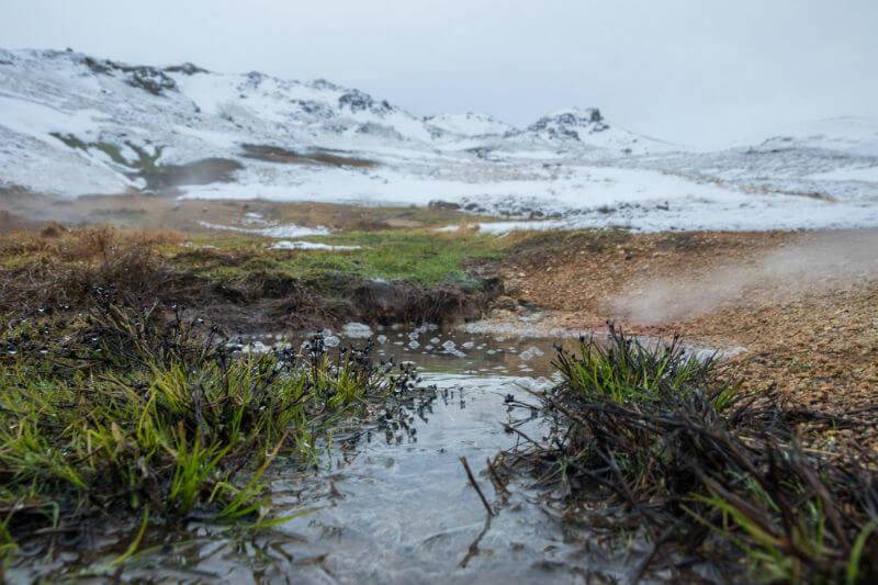 La energía geotérmica, que constituye una cuarta parte de la electricidad de Islandia, ha ayudado a aumentar la disponibilidad de alimentos frescos.