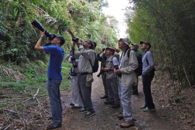 La organización cuenta con programas educativos, de investigación y monitoreo para la conservación de aves y el medio ambiente.