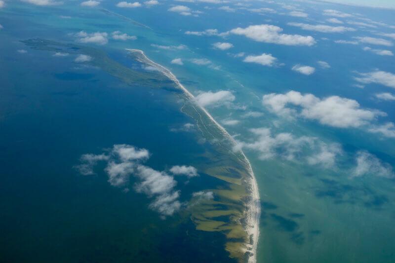 """Según el Cinvestav, científicos han restaurado ecosistemas acuáticos dañados por petróleo con """"el uso de organismos vivos para tratar un tipo de contaminante""""."""