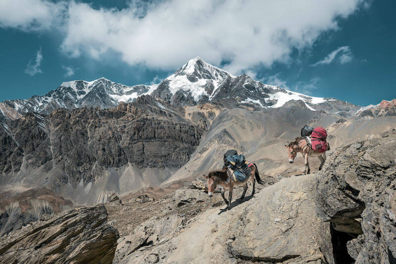 Si el calentamiento global no se detiene, tres cuartas partes de los glaciares del Himalaya se derretirán dentro de los próximos cien años, según un estudio.
