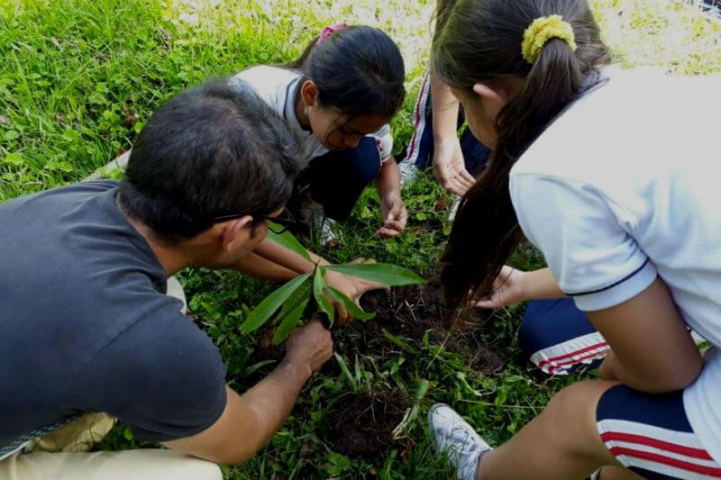 La fundación se dedica a la conservación, recuperación, protección y buen uso de los recursos naturales en Colombia.