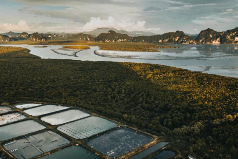 Debido a la falta de tierra, la agricultura y aumento poblacional, ahora las empresas colocan los paneles solares en lagos, represas, embalses y el mar.