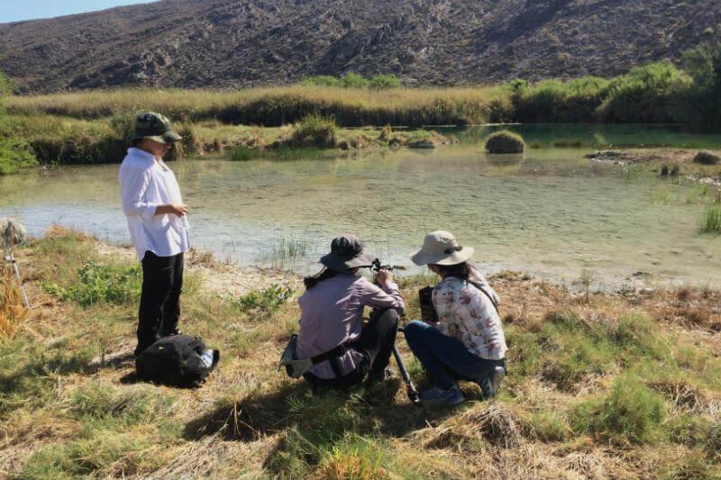 Tania Castillo: cineasta y defensora del ambiente