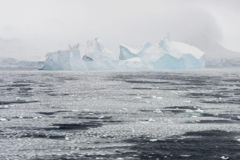 Investigación busca poder determinar la afectación de este fenómeno en la flora y fauna marina y su posible adaptación a las nuevas condiciones.