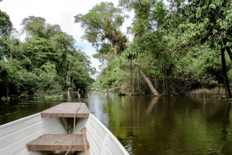 Comunidad de la Amazonia ecuatoriana implementa canoas con energía solar para transportarse entre sus nueve poblaciones aisladas en la selva.