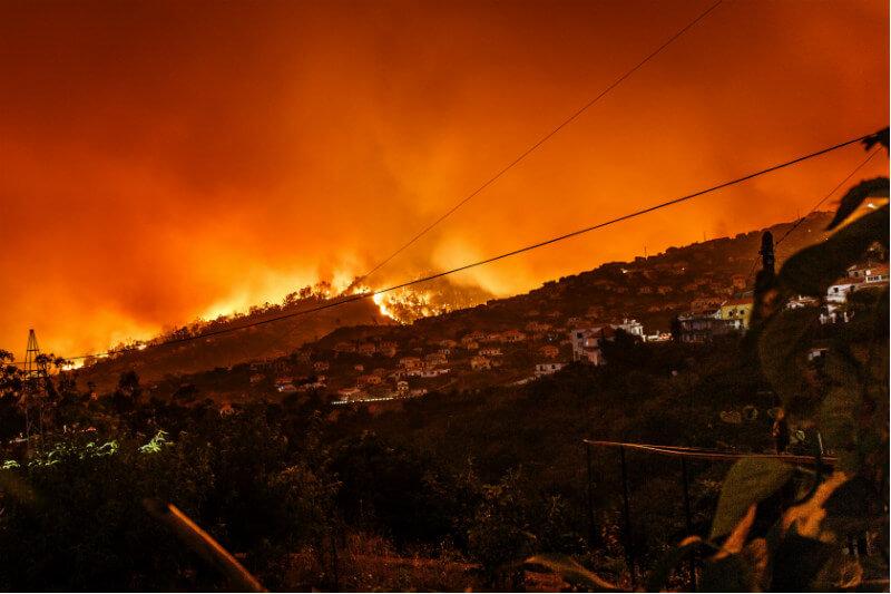 1,586 hectáreas resultan afectadas en los primeros tres meses del año por incendios dentro de las áreas silvestres protegidas en Costa Rica.
