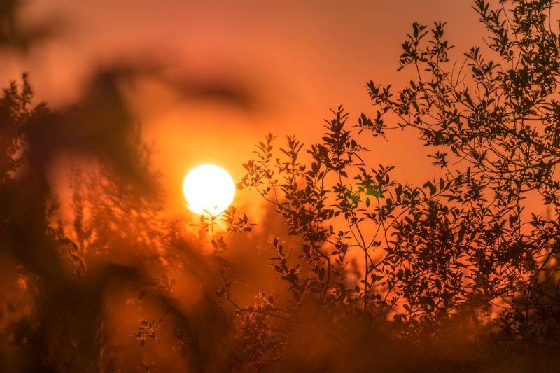 Porque un simple aumento en las temperaturas promedio podría desencadenar cambios catastróficos y duraderos para la vida tal y como la conocemos.