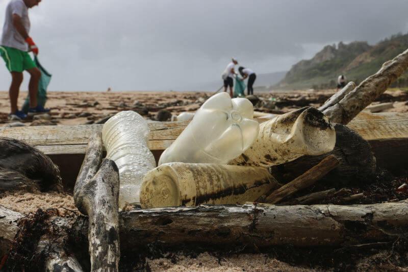 Científicos advierten que el precio social y económico de los desechos plásticos se ha subestimado globalmente.