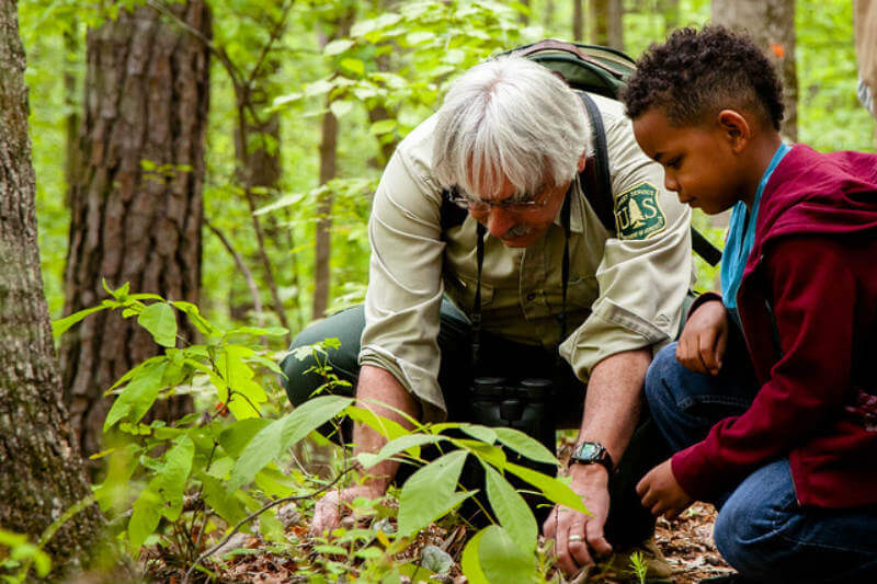 Ciudadanos se unen para crear un bosque de cultivos comunitario.