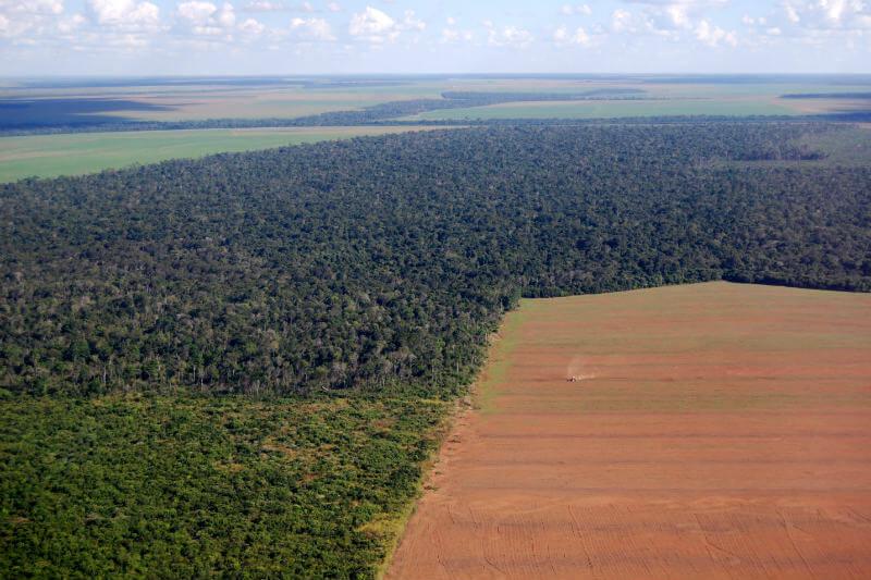 Colombia busca detener el avance de la deforestación y ser un país más sostenible.