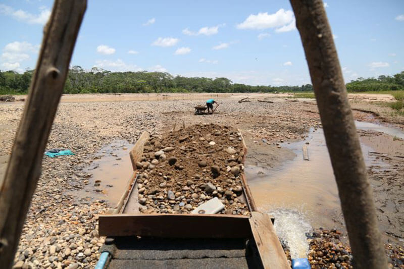 Países latinoamericanos entre los más deforestados