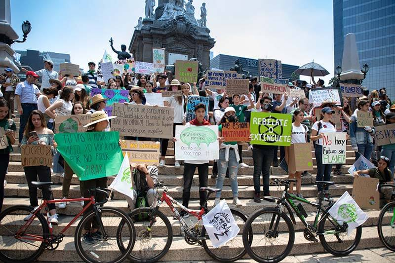 Fridays for Future - 24 mayo 2019