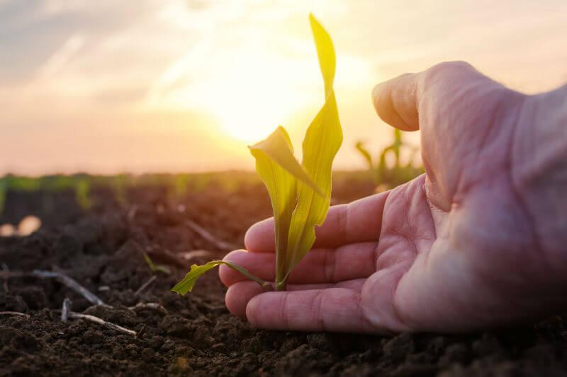 Los agricultores son ciudadanos que sufren las condiciones cambiantes del clima en sus pueblos y su actividad depende en gran medida de esas condiciones.