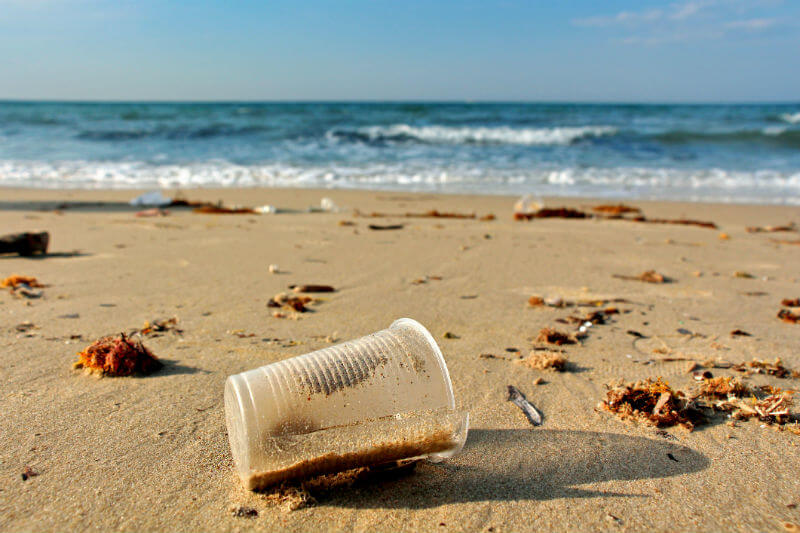 La concentración de microplásticos encontrada en la Bahía de Monterrey es incluso más grande que la de la Gran Mancha de Basura en el Pacífico.