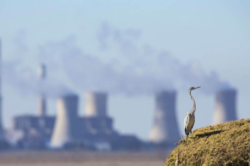 Finalmente se ha aprobado el impuesto a emisiones de carbono bajo la presión de líderes ambientalistas.