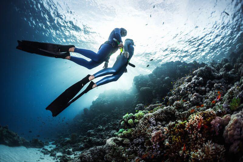 El sistema busca utilizar los trozos de coral que son desprendidos por el oleaje y replantarlos en otros sitios para crear nuevas colonias.