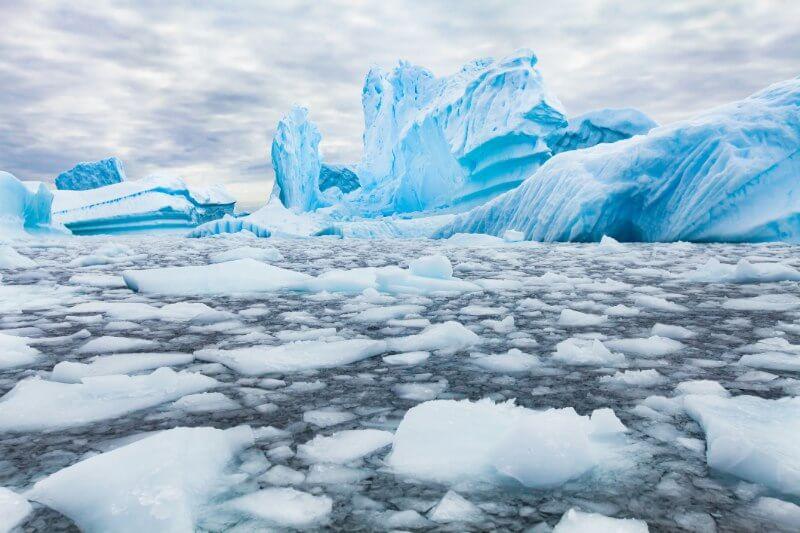 Se pasó de una superficie de 17.41 millones km2 al 2014 a unos 16 millones en 2017