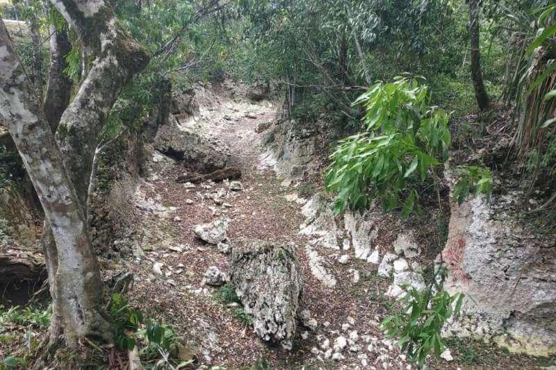Varios ríos se han secado y bajado su nivel desde hace cuatro años debido a la deforestación y la disminución de lluvia.