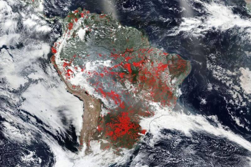 En un intento de desviar su responsabilidad en cuanto a los incendios actuales en la Amazonía, el presidente Jair Bolsonaro opta por acusar a los ecologistas.