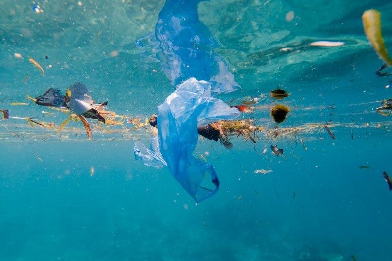 En el Mar de los Sargazos hay una creciente colección de desechos humanos proveniente de los países que bordean el Atlántico