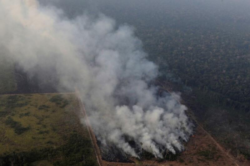 El presidente del país ha ordenado el despliegue tanto en las reservas naturales, como en las tierras indígenas y en las zonas fronterizas.