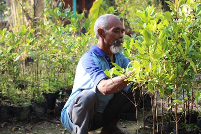 Sadiman, de 68 años, ha logrado revertir los estragos de las sequías y la deforestación en la Isla Java.