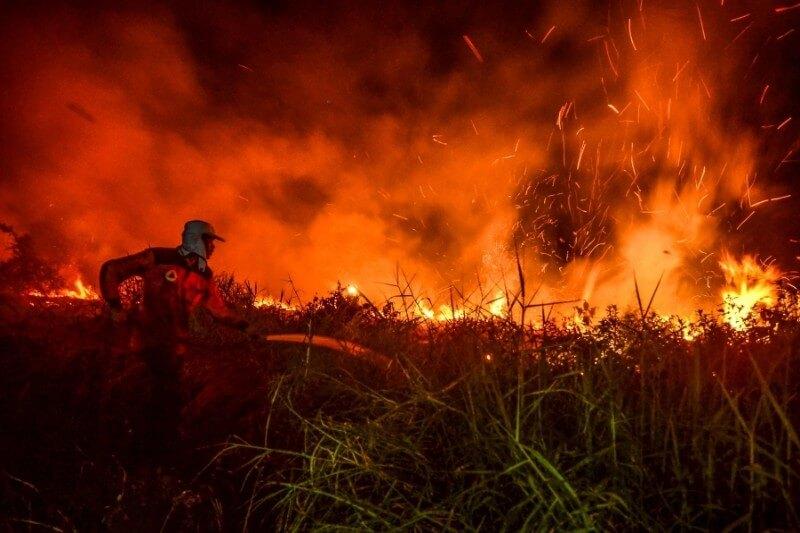 El país se enfrenta a la presión mundial para poner fin a la tala y quema de tierras, a menudo para plantar plantaciones de palma y pulpa.