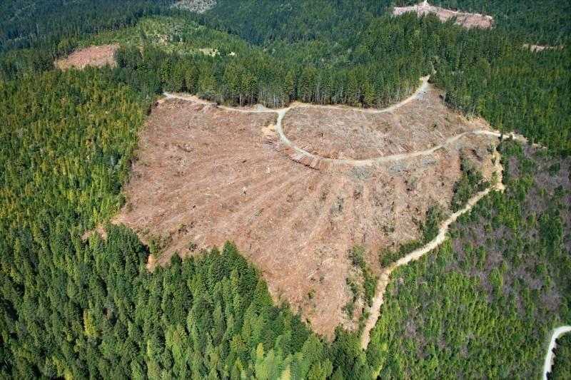 El país ha perdido el equivalente a nueve parques nacionales del Gran Cañón, o 2,412 acres de área natural, entre 2001 y 2017.