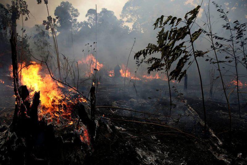 Elaumento de los incendios en la Amazoniaha generado una nueva reacción que podría afectarla vacilante economía brasileña