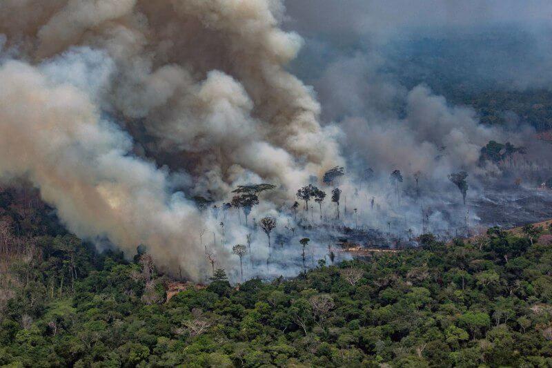 El pronóstico sugiere que la selva podría dejar de producir suficiente lluvia para sostenerse en 2021.