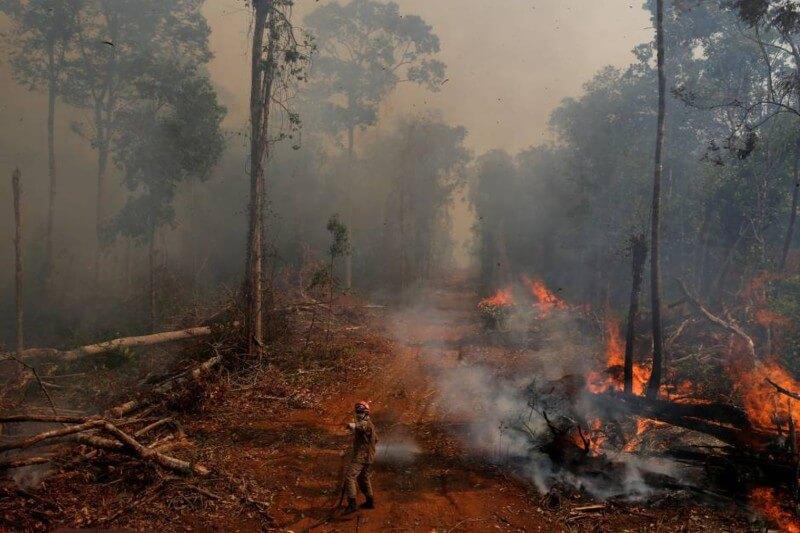 La destrucción de la Amazonía totalizó 7,854 kilómetros cuadrados de enero a septiembre