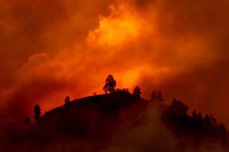 """La declaración establece """"signos vitales"""" como indicadores de la magnitud de la emergencia climática."""