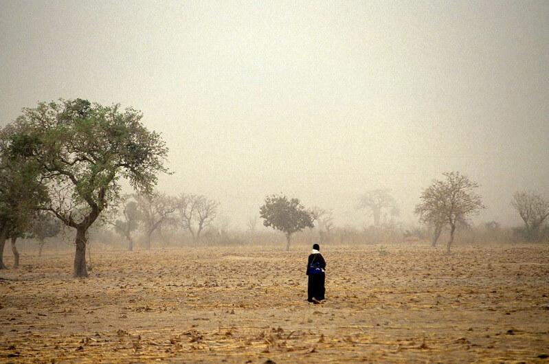La Organización Meteorológica Mundial advierte de que este año estará entre los tres más cálidos jamás registrados.